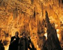 Escorted Tours New Zealand - Waitomo Caves