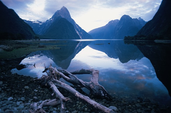 Picture Perfect 7 Day South Island Tour