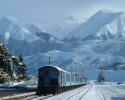 The TranzAlpine train travels from Christchurch to Greymouth