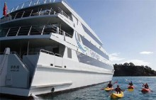 Cruising in the Bay of Islands